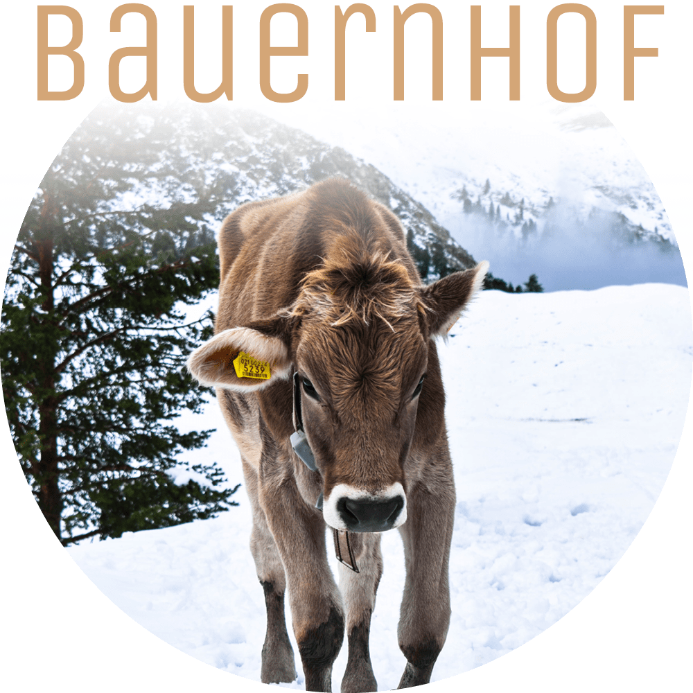 Lichtung Woldererhof - Bauernhof